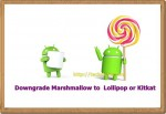 Downgrade Marshmallow to Lollipop 5.1.1 or Kitkat 4.4.4